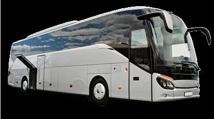 Bus 49 passengers